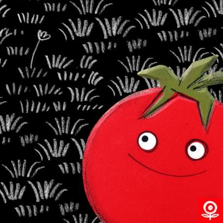 Garden - Tomato